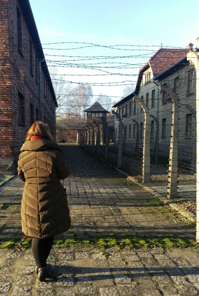 Auschwitz 2015