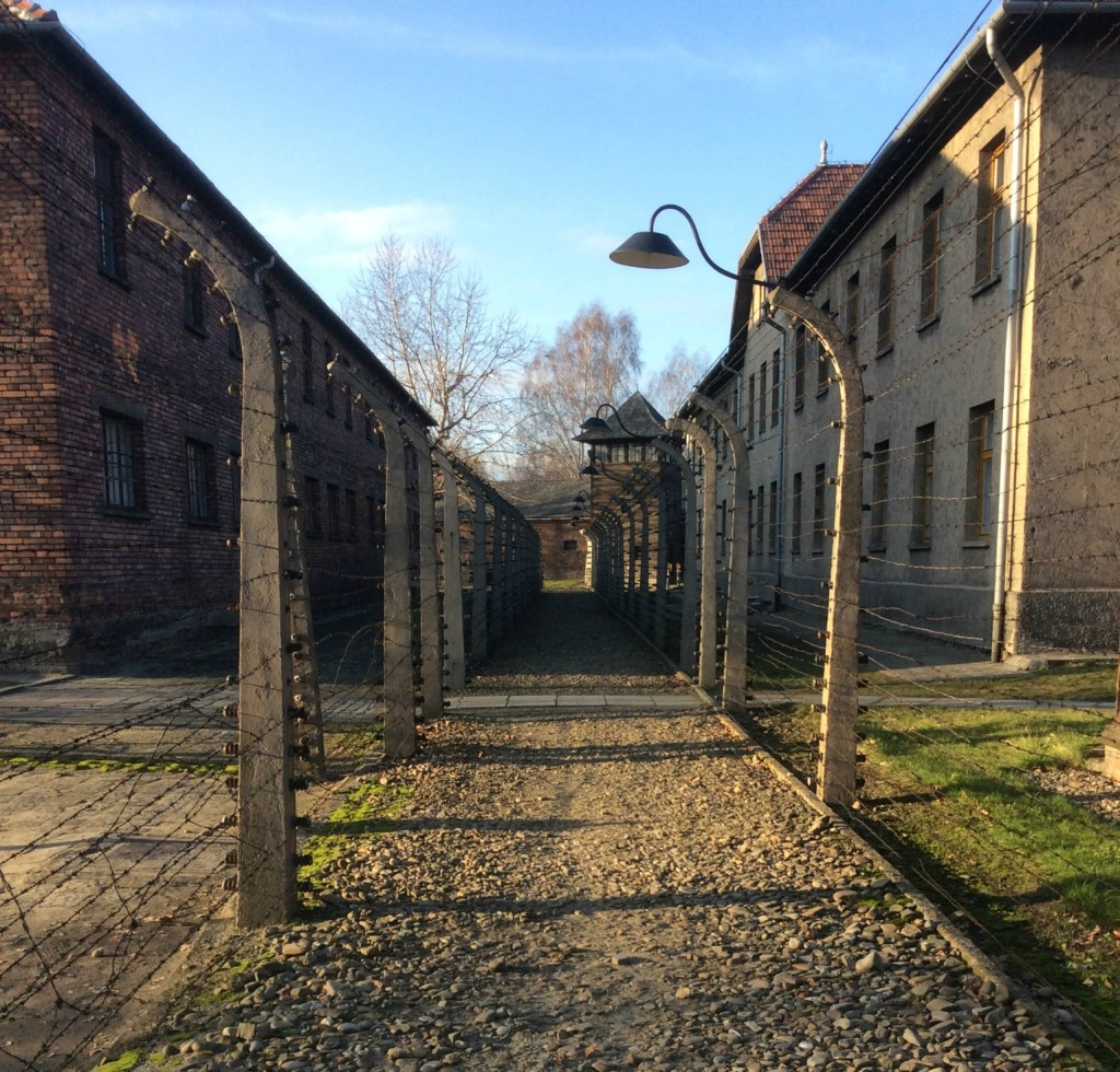 auschwitz barrier