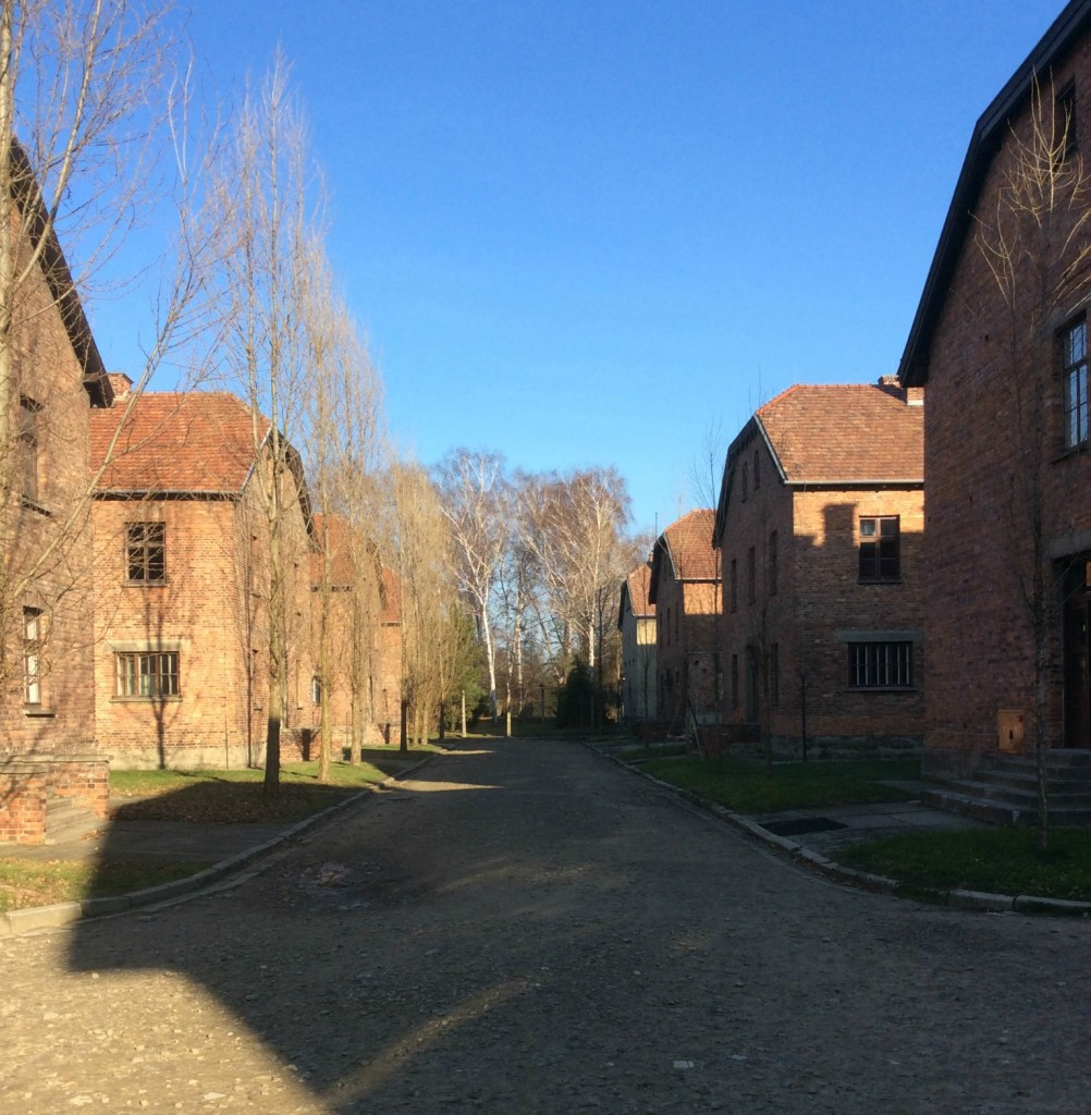 auschwitz buildings